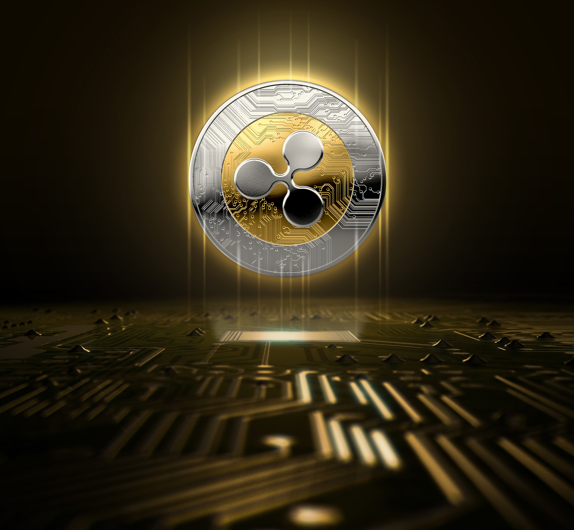 What Is Ripple: Is Ripple the Next Bitcoin?